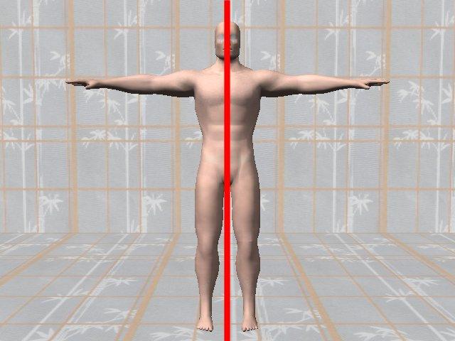 BodySymmetryDiagnosis-SymmetricBody
